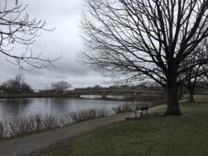 Gray Day on the Charles